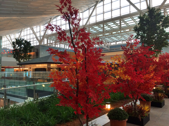 国際線ターミナルの4階