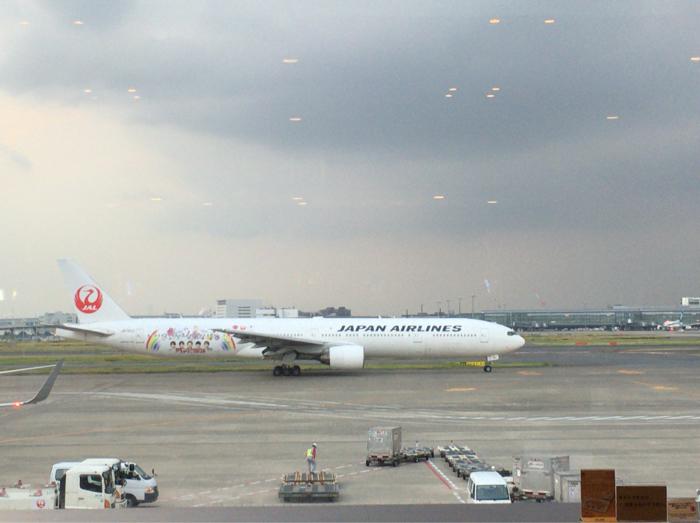 JAL 嵐ジェット