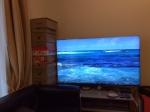 ハワイ ビーチ映像